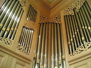 organ_16-1.jpg